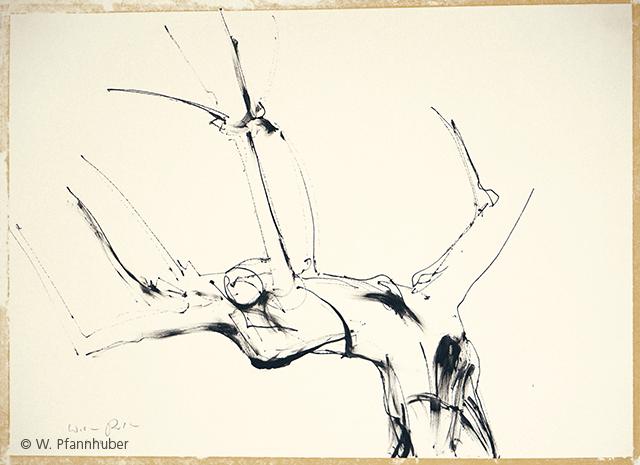 W.Pfannhuber-06_Eine-Verbeugung-3